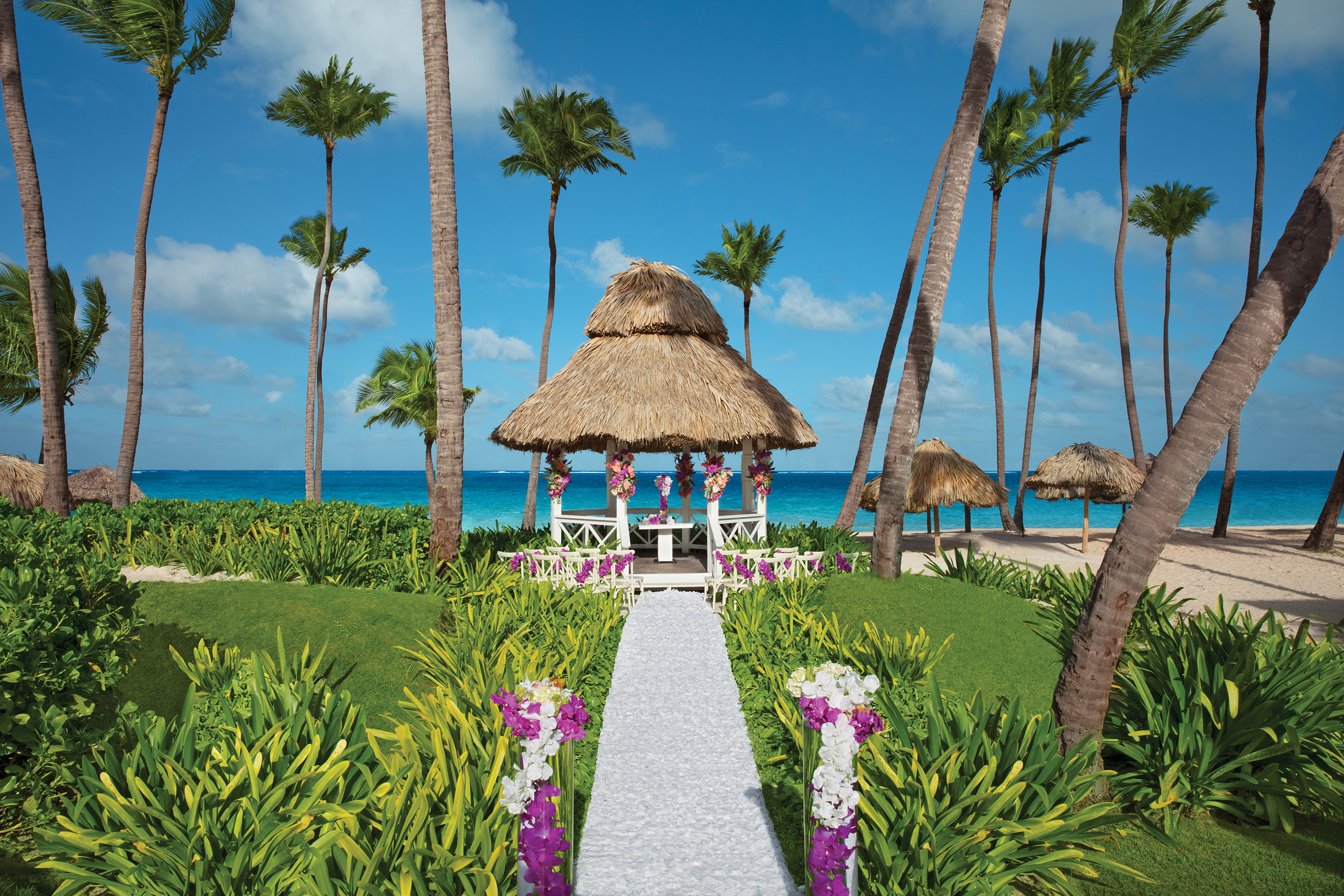Dreams Palm Beach Wedding Packages